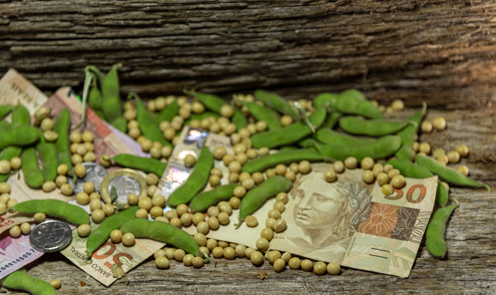 Soja tem a maior participação entre os produtos no faturamento do agronegócio brasileiro. (Fonte: Shutterstock)